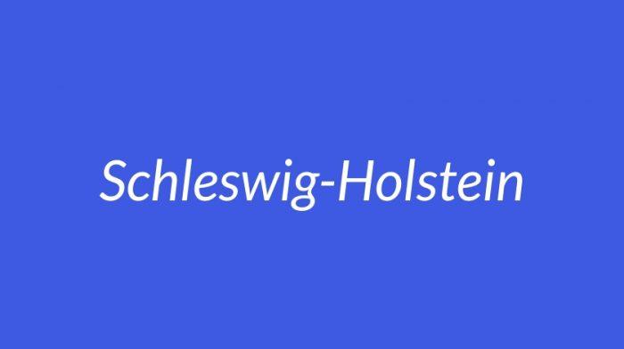 LZN in Schleswig-Holstein